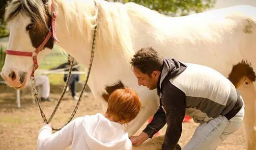 Yohan Guerin en séance d'ostéopathie sur un cheval